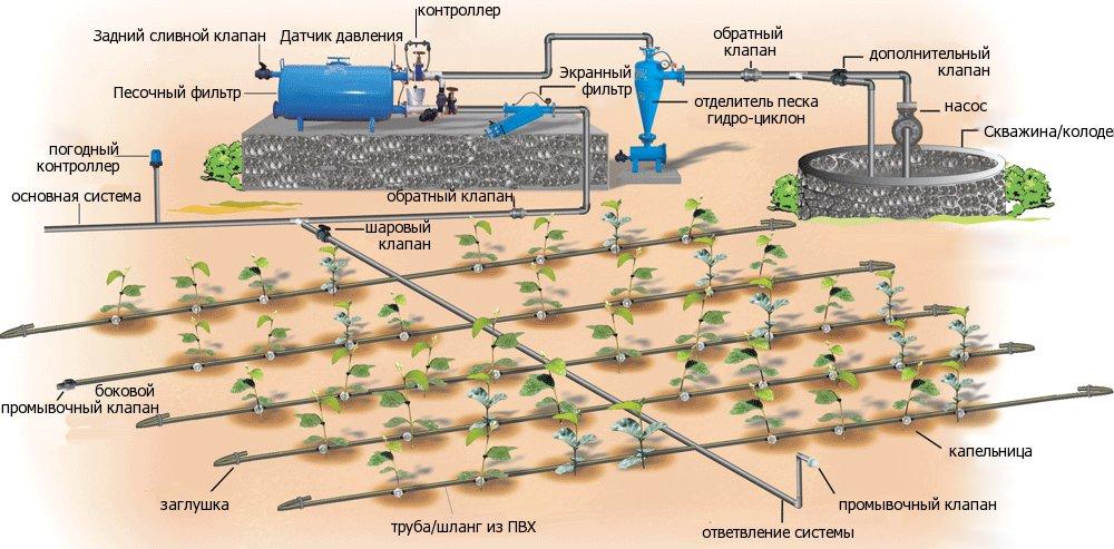 Пример сложной системы капельного полива, способной обеспечить орошение на большой площади