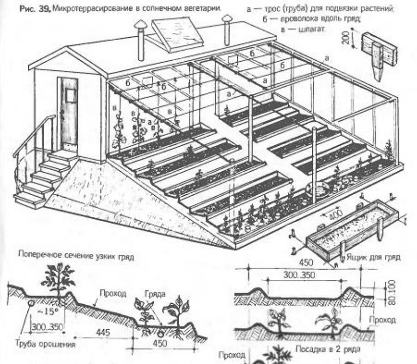Расположение грядок и подземного обогрева в вегетарии
