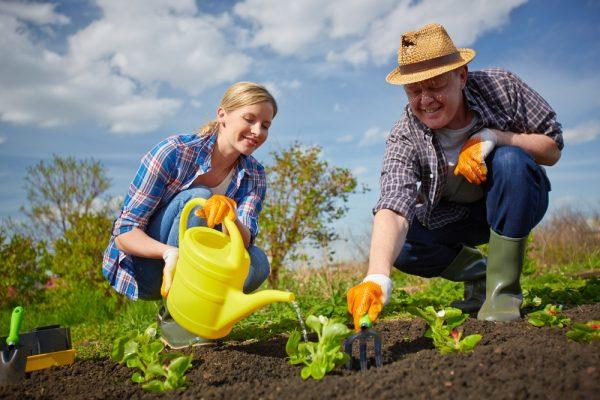 """Любовь к садоводству предопределит все """"за"""" и """"против"""" такого бизнеса"""
