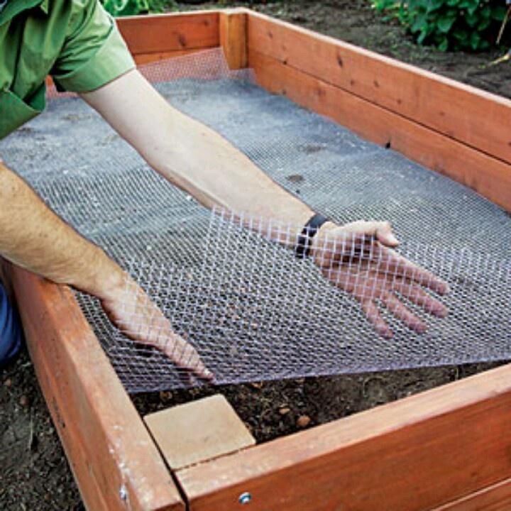 Сетка необходима для защиты от мышей и прочих грызунов