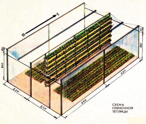 Схема пленочной теплицы со стеллажами