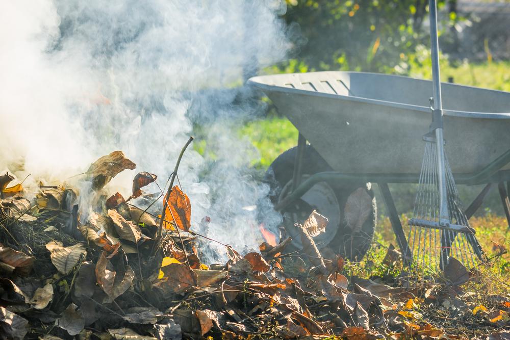 Сжигание мусора и уборка сада