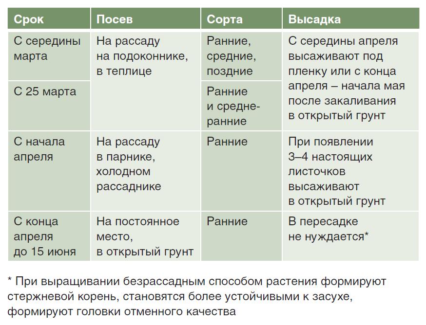 Таблица оптимального срока посева капусты