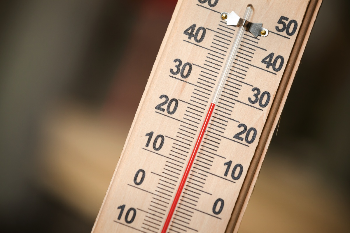 Температура - это важный момент в выращивании рассады капусты