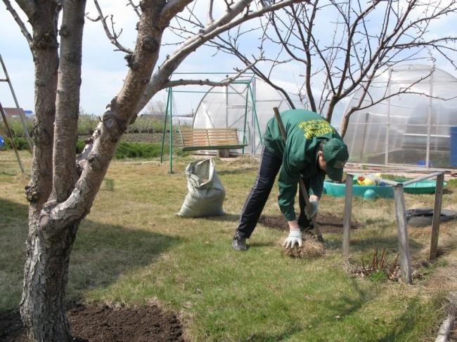 Уборка дачного участка весной