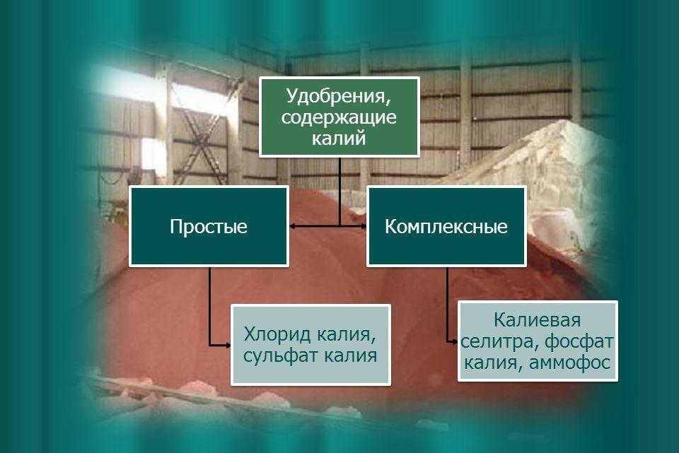 Удобрения, содержащие калий