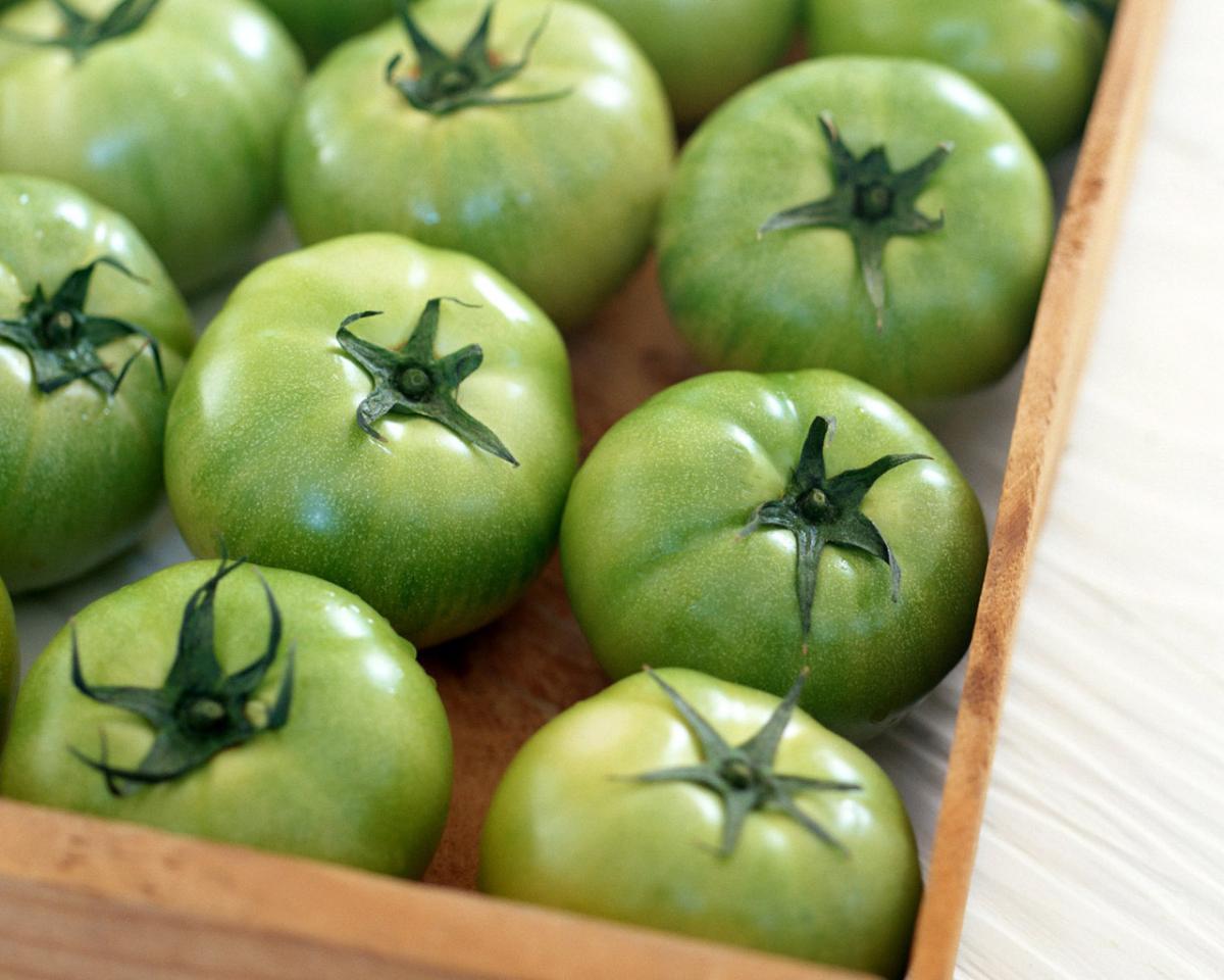 Зеленые томаты на дозревании