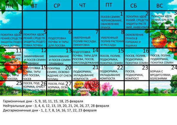 Календарь садовода на февраль 2019 года