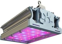 LED-ФИТО-45/RS