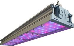 LED-ФИТО-168/VR