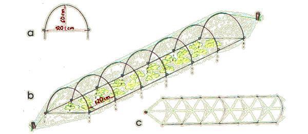 Конструкция низкого тоннеля из пленки: а – дуга для создания тоннеля; b – тоннель после прикрытия пленкой; c – способ крепления шнура в тоннеле