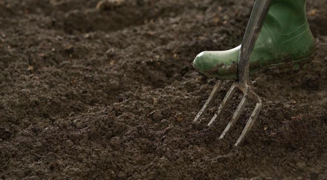 Боронование при внесении карбамида перед посадкой с/х культур обязательно – в противном случае эффективность удобрения сильно падает