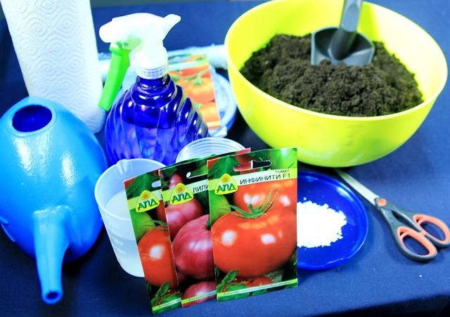 Что потребуется для посева семян томатов