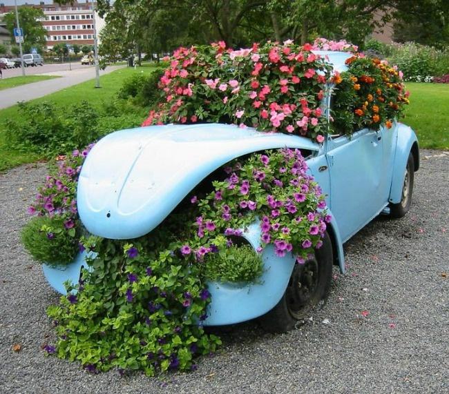 Цветущая клумба в автомобиле