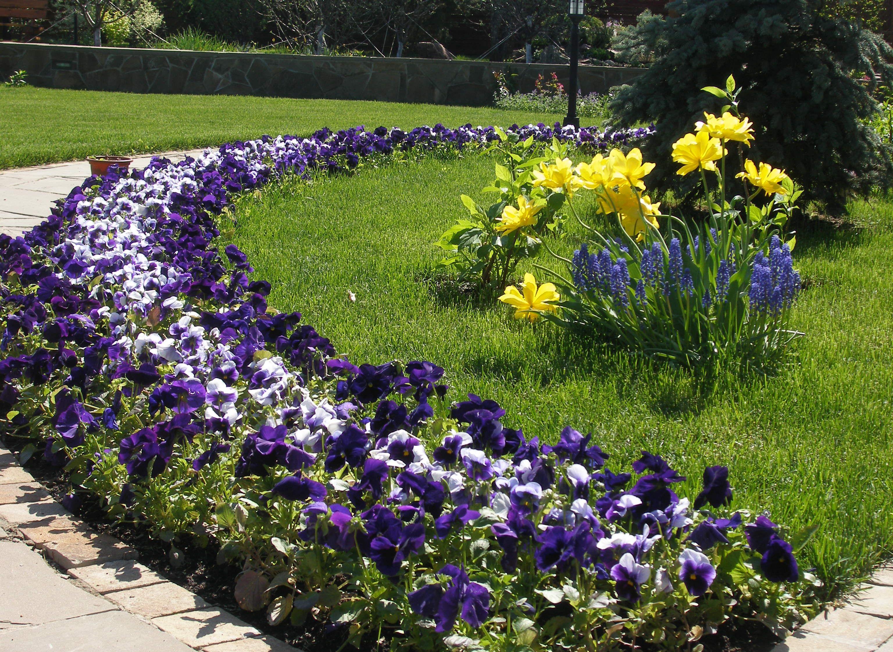Цветы должны располагаться на видном месте