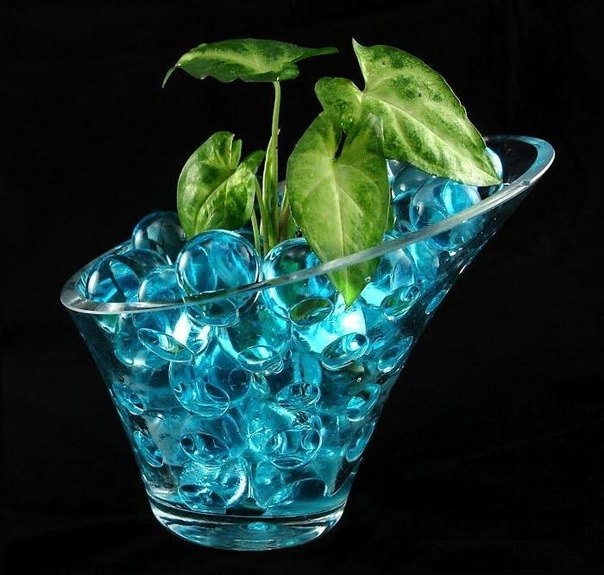 Гидрогель для растений - применение