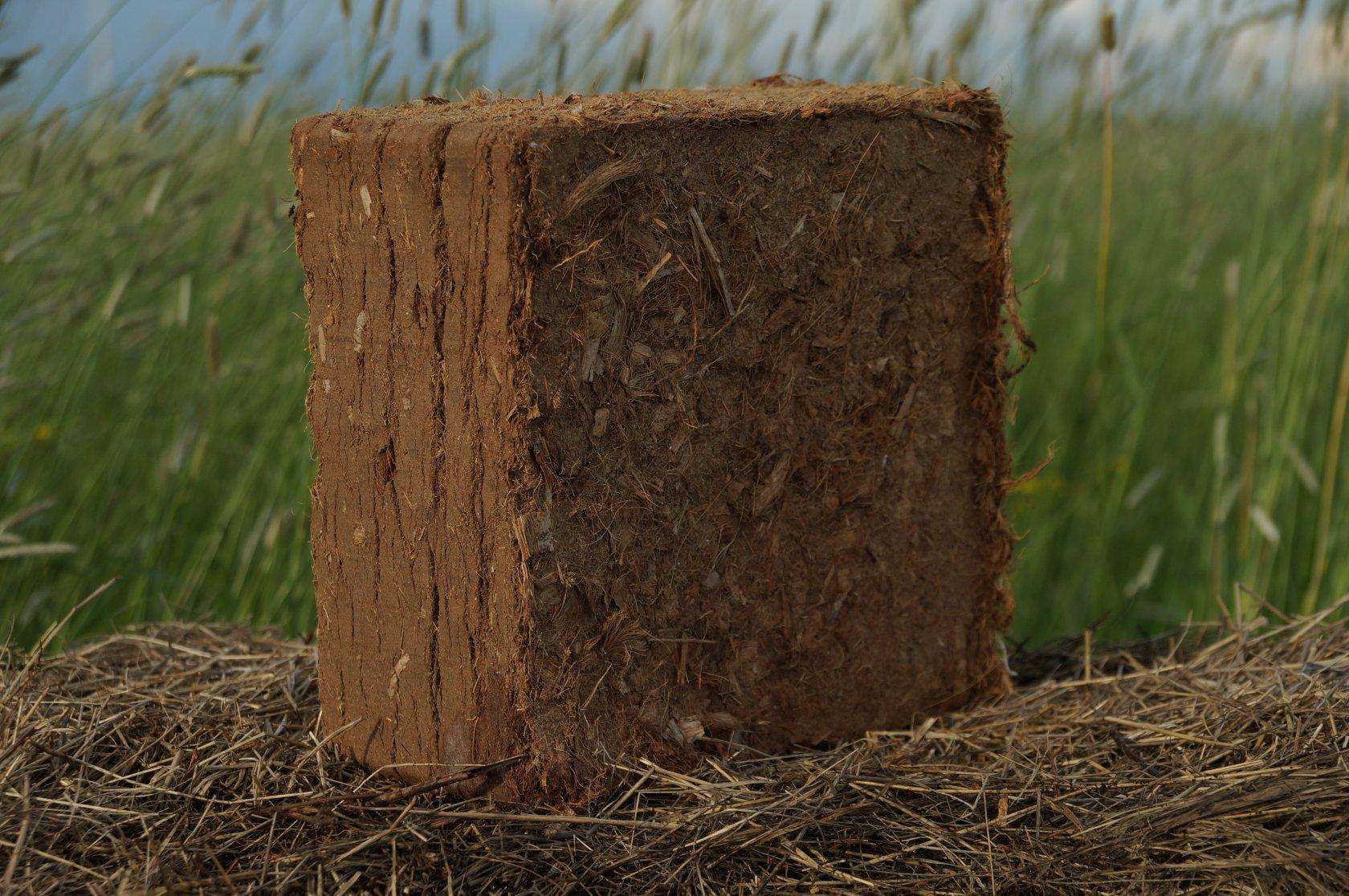 Использование кокосового субстрата минимизирует возможные риски для растений