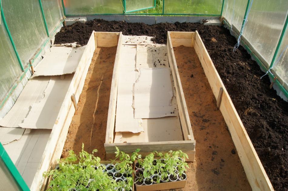 Картон и плодородная земля поверх засыпки из органики
