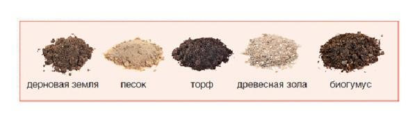 Компоненты почвосмеси для рассады
