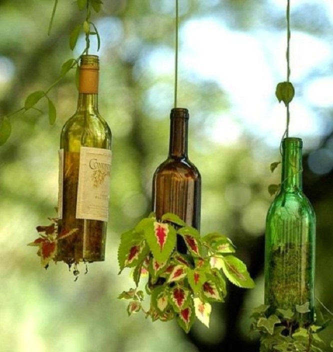 Мини-клумбы — небольшой сад прямо в стеклянной бутылке