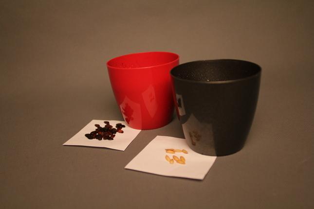 Пластиковые горшки для выращивания рассады