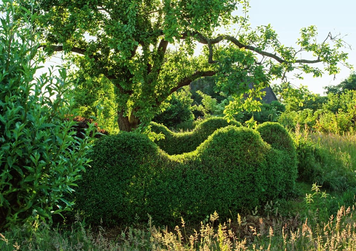 Придайте стене волнообразную форму - так живая изгородь будет смотреться динамичнее