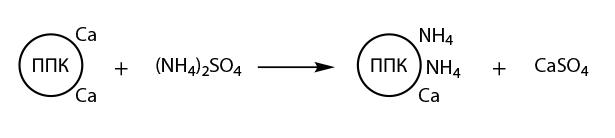 Процесс взаимодействия сульфата аммония с почвенно-поглощающим комплексом