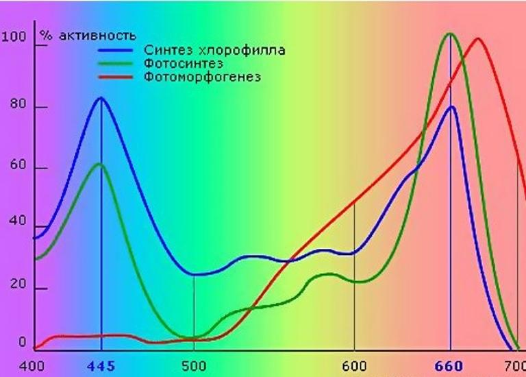 Рекомендованный спектр для организации освещения