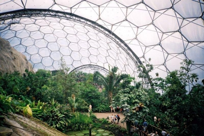 Рельеф внутри биома