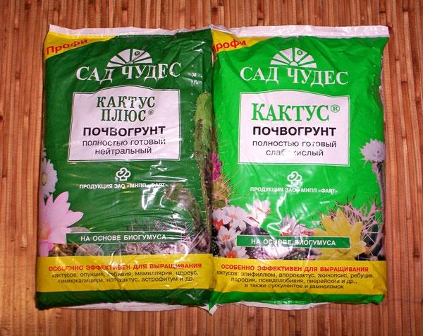 Земля для кактусов пригодна для высадки алоэ