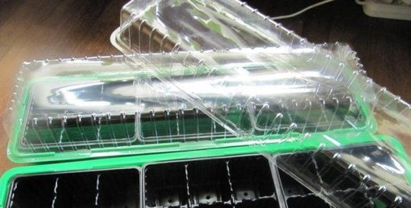 Комплект кассет для рассады, снабженный общим поддоном и прозрачной крышкой для создания росткам тепличных условий. В центре каждой отдельной ячейки можно заметить отверстия, используемые для дренажа – отвода лишней воды из грунта, в котором находится рассада