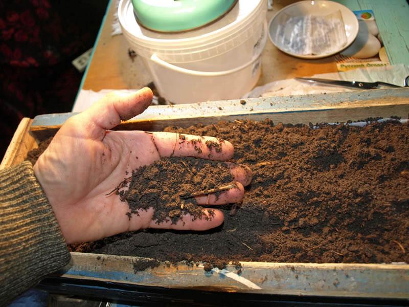 Приготовление грунта для рассады