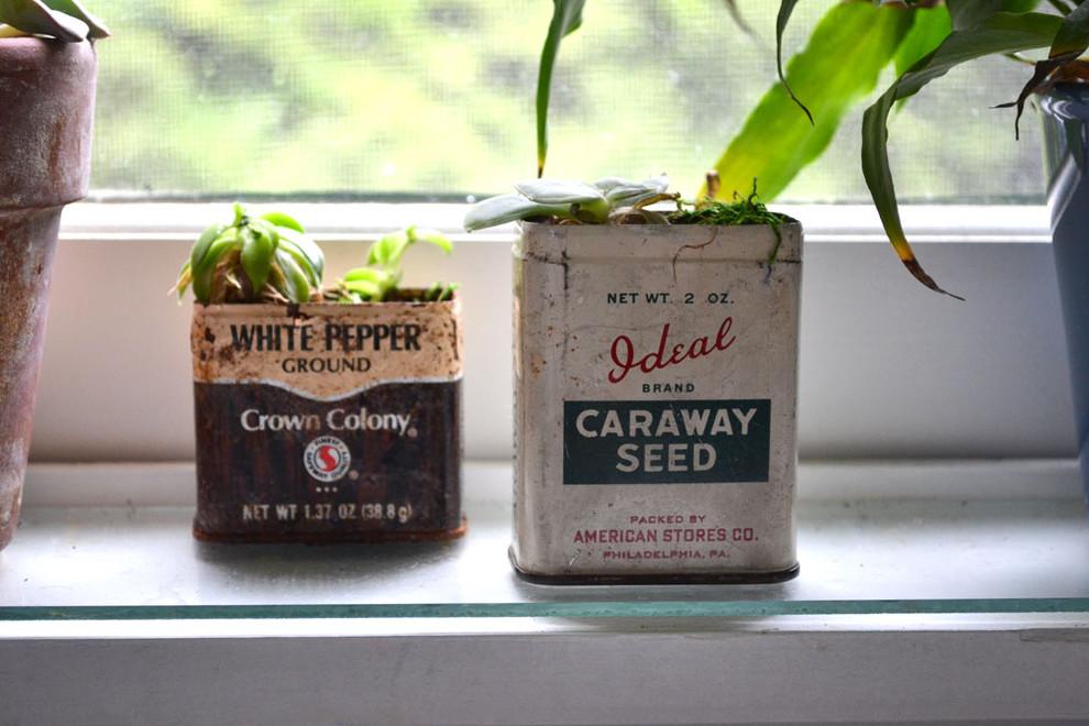 Старые банки для рассадки растений