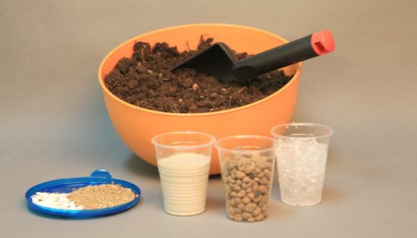 Ингредиенты для самостоятельного приготовления почвосмеси
