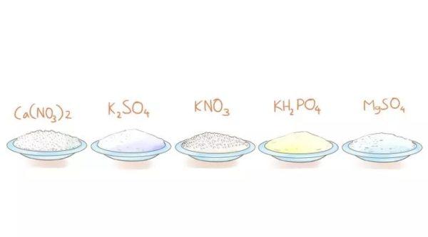 Купите все необходимые химические соединения