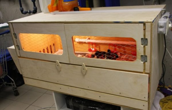 Обогреваемый домик для цыплят