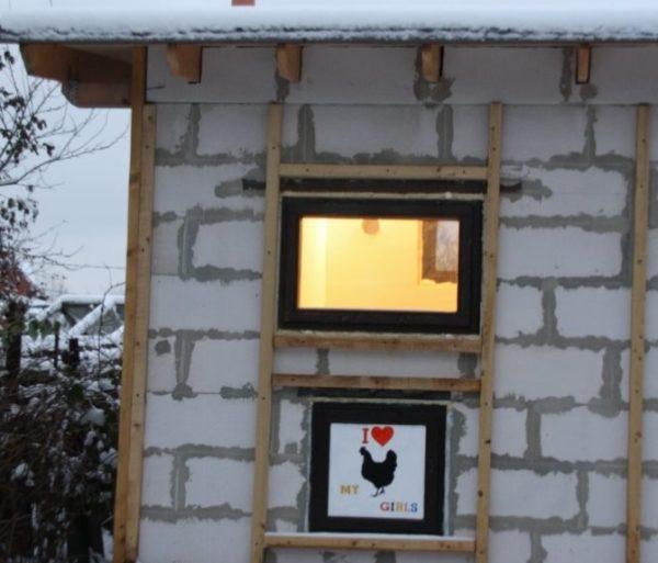 Окно и лаз для кур