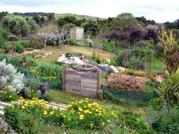 Пермакультура — новый вид экологического земледелия