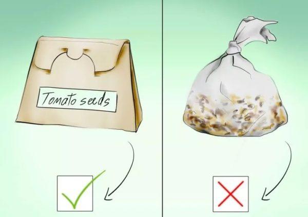 Семена нужно хранить в бумаге или ткани, но не в пленке