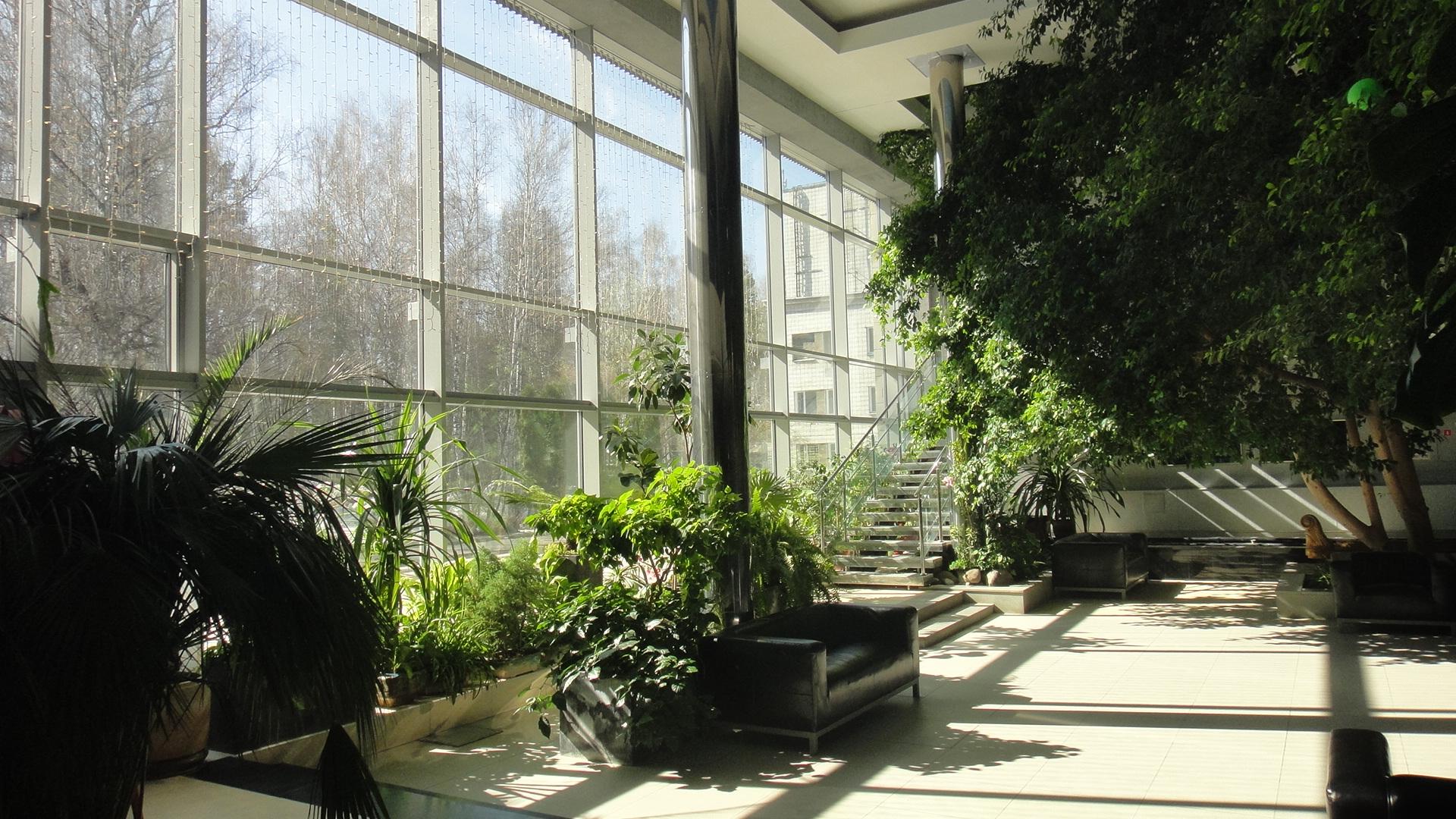 Зимний сад в частном доме своими руками фото фото 36