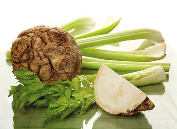 Сельдерей — единственное растение, в котором полезные вещества равномерно рассредоточены по всем частям