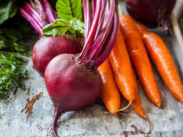 Морковь и свекла хорошо подготавливают грунт для ремонтантной земляники