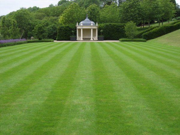 Травяной газон следует подготавливать к зиме.