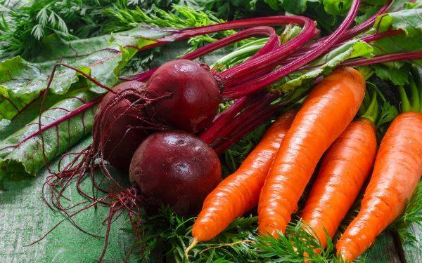 Первыми собирают морковь и свеклу