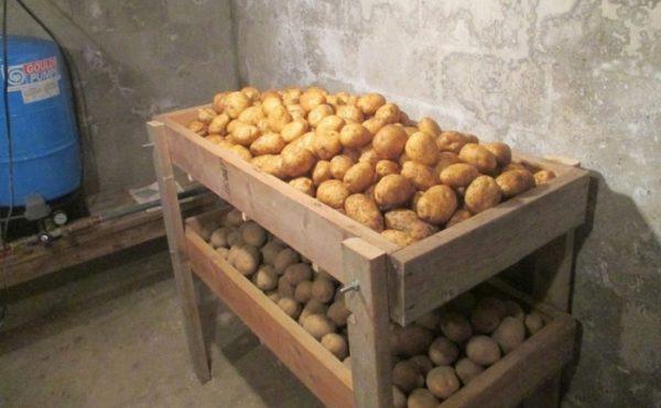 Насыпным способом лучше не хранить картофель, так как его необходимо проветривать