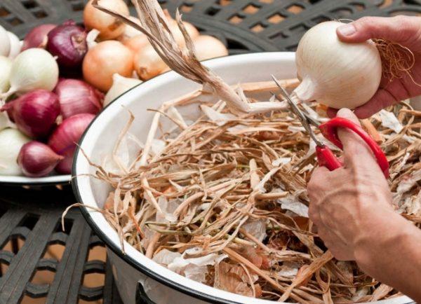 Избавляясь от ненужных растительных остатков, вы предотвращаете вторичное прорастание