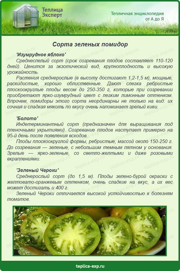 Сорта зеленых помидор