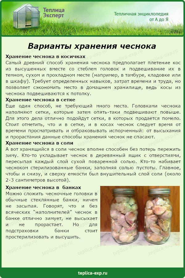 Варианты хранения чеснока