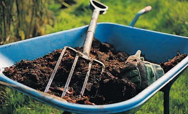 Проводя все мероприятия глинистая почва не уплотнится и не сильно усядет под тяжестью снега