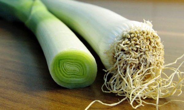 Порей используется практически во всех блюдах, начиная от салатов и заканчивая супами и вторыми блюдами